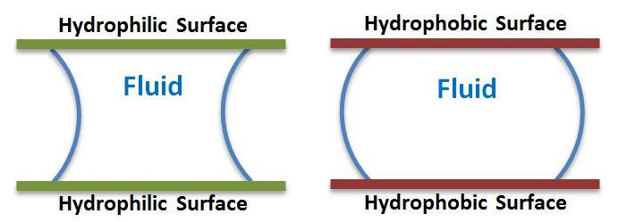 Hydrophilic