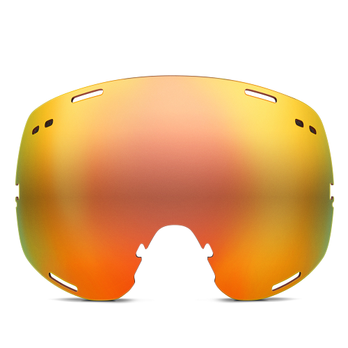 Tinted Goggle Lens
